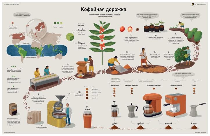 Рис. 4 – Приклад вічнозеленого контенту: інфографіка про каву