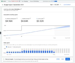 Превью к новости Google Ads: New Budget Report